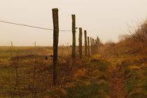 Zaun in Braun by dresdner