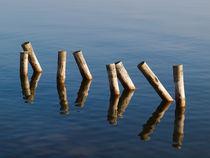 Pfähle im Wasser by dresdner