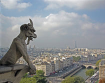 Gargoyle Surveying Paris by Sally White