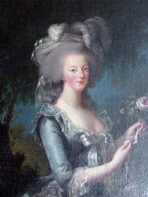 Marie Antoinette von Sally White