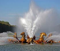 Horses Fountain in Versailles by Sally White