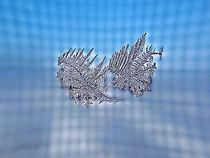 Silver Snow Flakes von Irfan Gillani