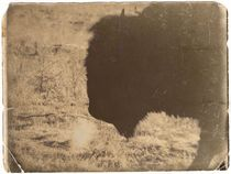 Vintage Bison von Deniece Platt