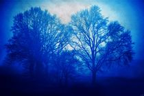 feeling blue von ndsh