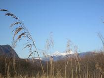 Traumtag im Winter by Fanny Prankl