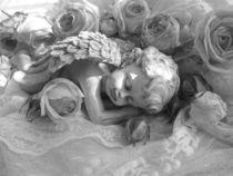 Engel im Rosenbett von Gabriele Waldherr