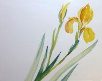 Königin der Blumen von Sonja Jannichsen