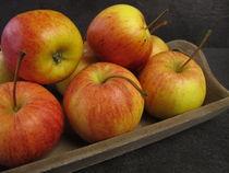 Kleine Äpfel Tenroy Gala Royal von Heike Rau