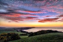 Baggy Point sunset von Dave Wilkinson