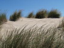 dune by Jake Ratz