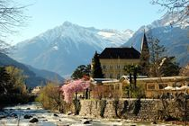 Spring in Merano by Luisa Azzolini