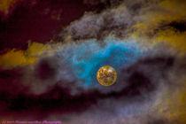 Moonlight Serenade von Herman van Bon