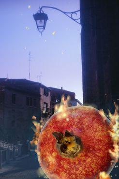 Epifania-del-fuoco-by-iris-weirich