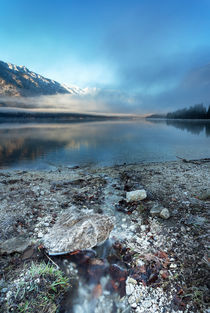 Bohinj's morning creek by Bor Rojnik