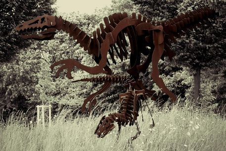 Dinos-6000-b-8
