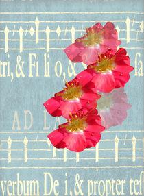 Music and Wild Roses von Rosalie Scanlon