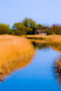 Ducht farm landscape by Leandro Bistolfi