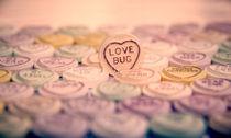 The Love Bug von Dan Davidson
