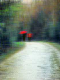 Walk In The Rain von florin