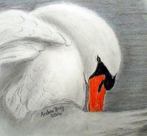 Swan by pencilart