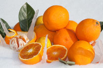 oranges and lemons on snow