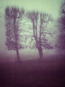 Fog in the park by Liselotte la Cour