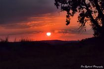 Fire on the Horizon by Dan Richards