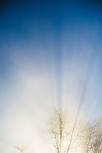 rays of the sun in the mist by Emanuele Capoferri