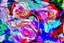 Rosen Abstrakt von Walter Zettl