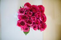 roses by Emanuele Capoferri
