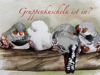 Malenammeerfinken
