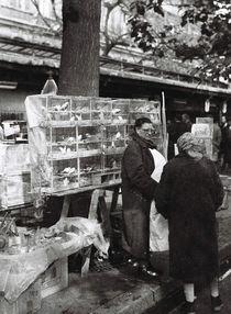 La vendeuse d'oiseaux - Paris 1964 by techdog