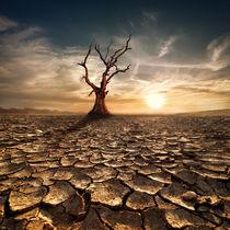 Desert Landscape von perfectlazybones