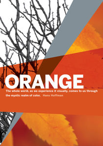 Colour Me Orange by Rene Steiner