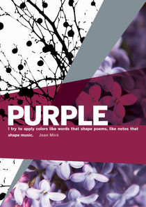 Colour Me Purple by Rene Steiner