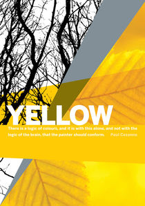 Colour Me Yellow by Rene Steiner