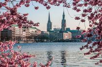 Hamburg im Frühling VI von elbvue von elbvue