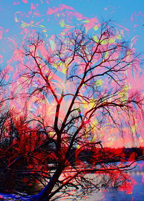 Natur Abstrakt by Walter Zettl