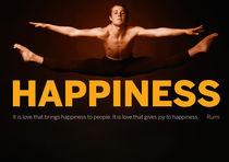 Happiness — Rumi von Rene Steiner