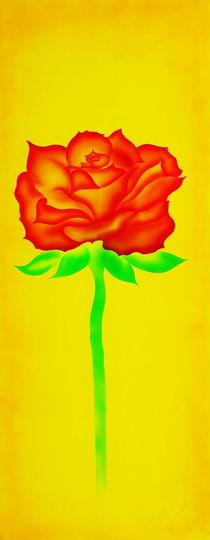 Rose 5 von Walter Zettl