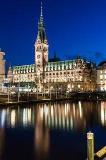 Hamburger Rathaus I von elbvue von elbvue