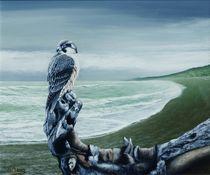 Tundra Peregrine Falcon by Noel Clarke by theartmarket