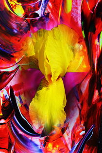 Natur Abstrakt  5 by Walter Zettl