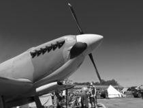 Supermarine Spitfire  by Robert Gipson