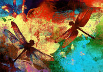 Dragonflies and Orchids by vitta