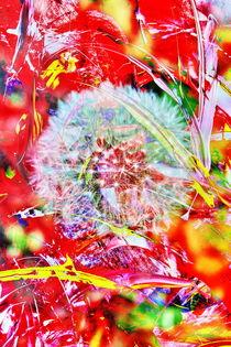 Pusteblume Abstrakt 2 von Walter Zettl