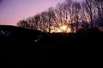 Sonnenuntergang in Werther im Frühling von framboise
