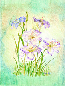 Day-lilies-w-green-bkgnd