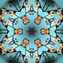 Blütenzweigmandala von Sabine Radtke