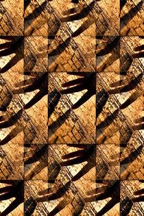 Wood Touching by Valentino Visentini